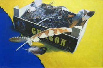 feathers in a Clemetine box Jane German 40 x 30cm