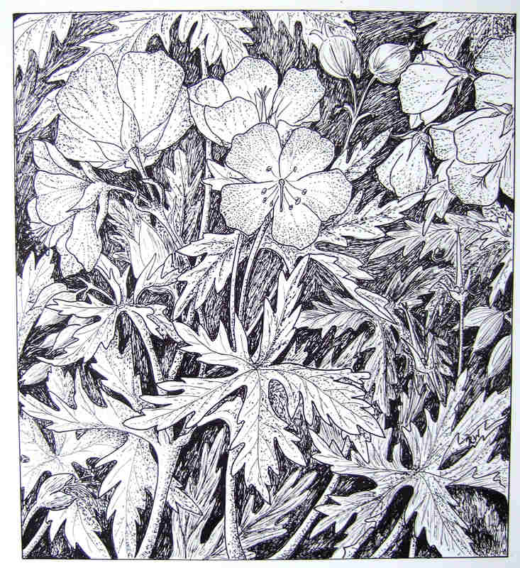 Ruth Wharrier  Wildflowers by the Waveney