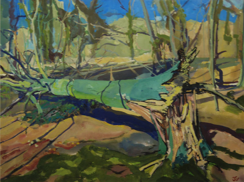 Wind Blown Beech James Colman 54x74cm