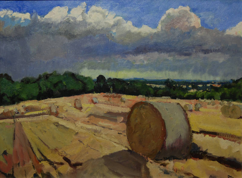 Harvest Field James Colman 58x79cm
