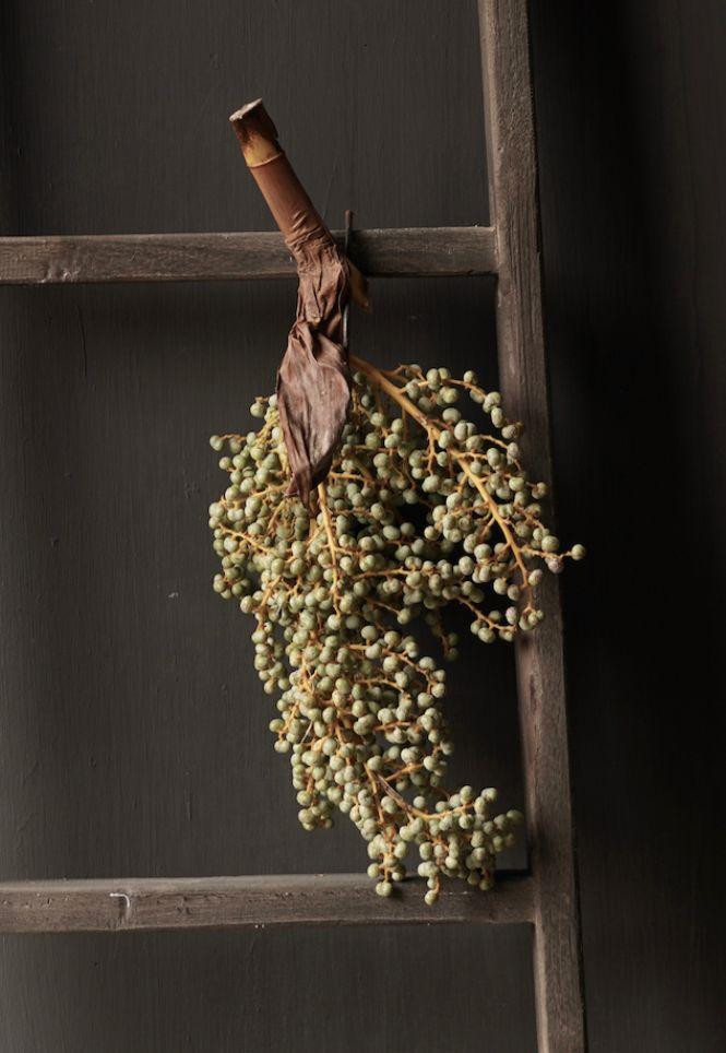 Dried dates/Dadeltak