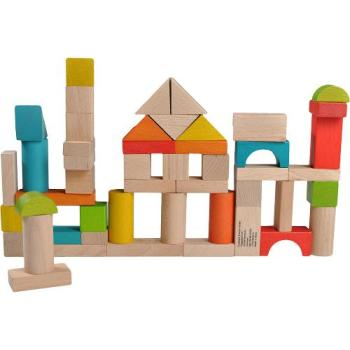 Ever Earth 50 Piece Wooden Building Blocks