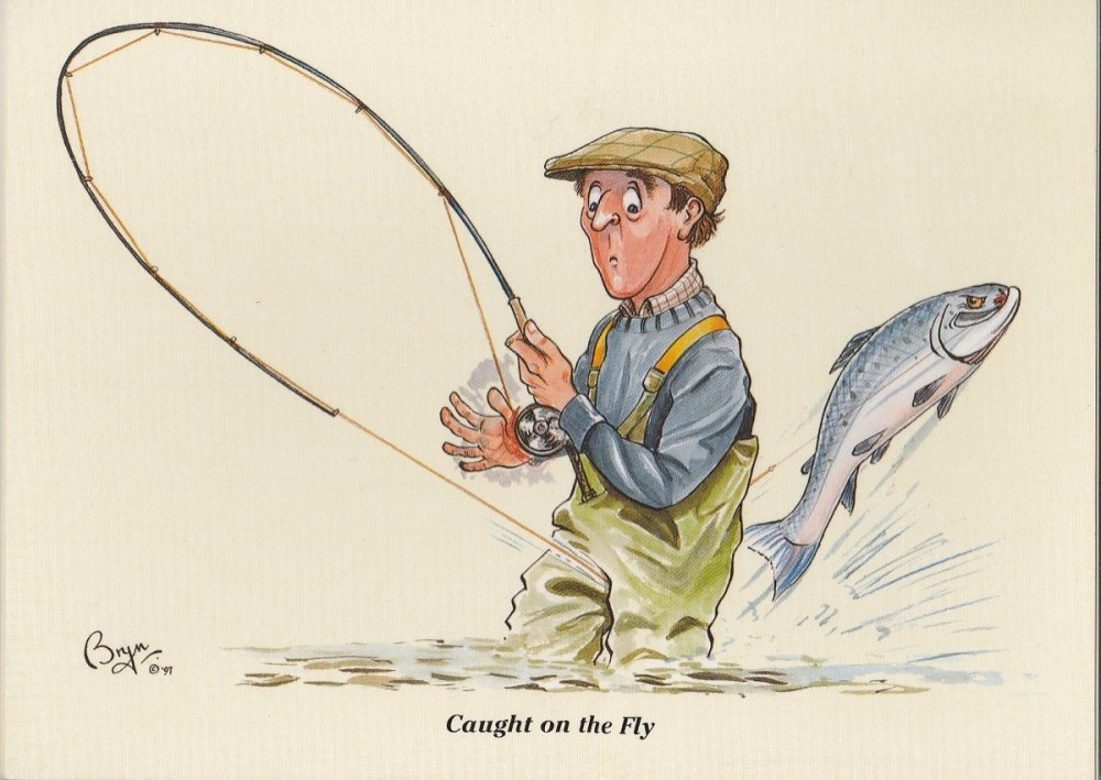 Bryn Parry Fishing Note Cards