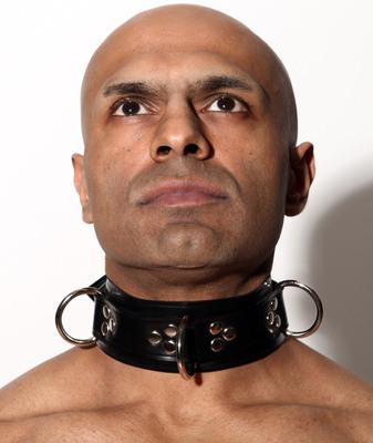 'D' Ring Collar