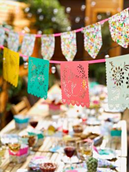 Colourful Mexicana Bunting