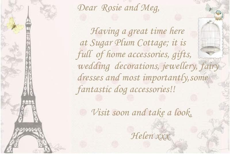 Beautiful things for your home, wedding accessories, dog clothing and lovely leads and collars, beautiful fairy dresses