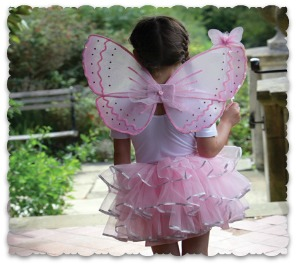 Candy Floss Fairy Set