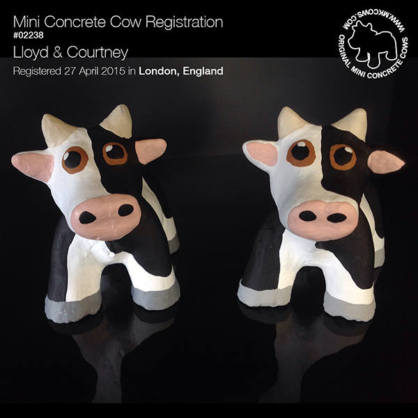 cow_registration_02238