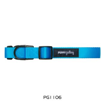 PG Dog Collar Basic Blue
