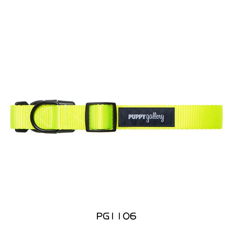 PG Dog Collar Basic Yellow