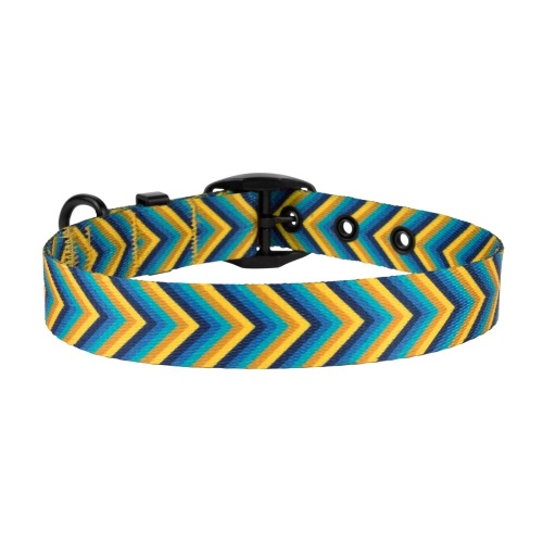 Arrow Collar Yellow Blue