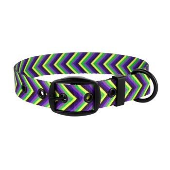 Arrow Collar Purple Lime