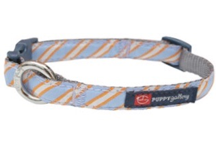 PG Dog Collar Blue Stripe