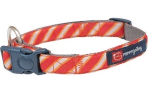 PG Dog Collar Red Stripe