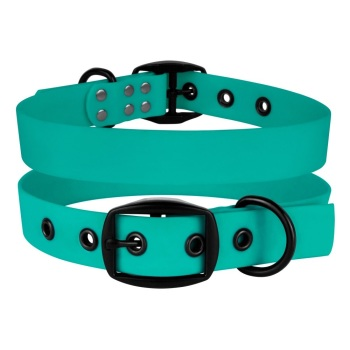 Waterproof collar Mint