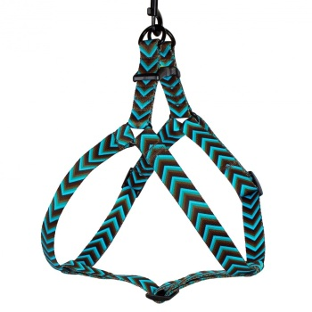 Step-in Nylon Harness Arrow Aqua
