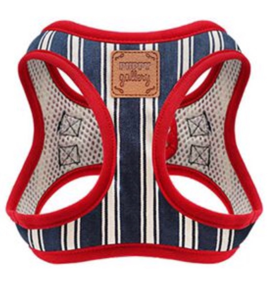 PG Harness Stripe Blue