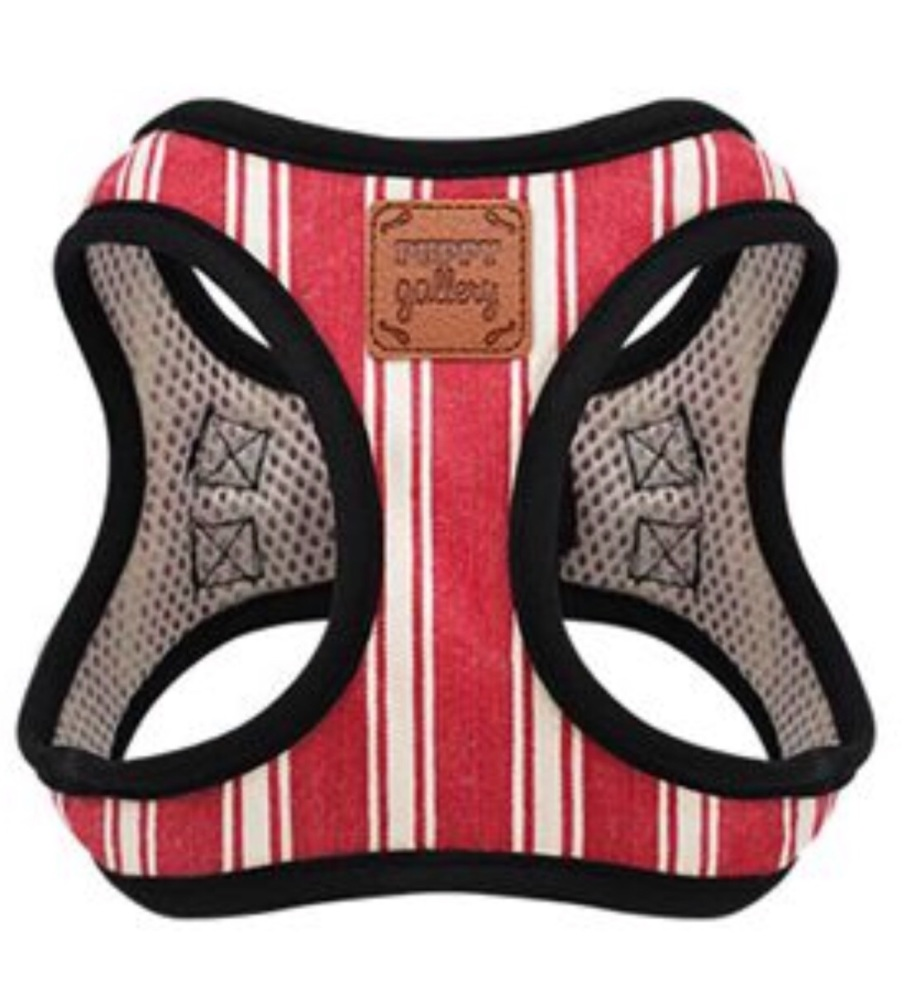 PG Harness Stripe Red