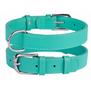Soft Leather Mint Collar