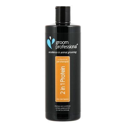 2 in 1 Shampoo