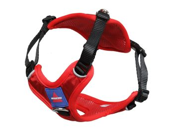 Go Out Harness Red