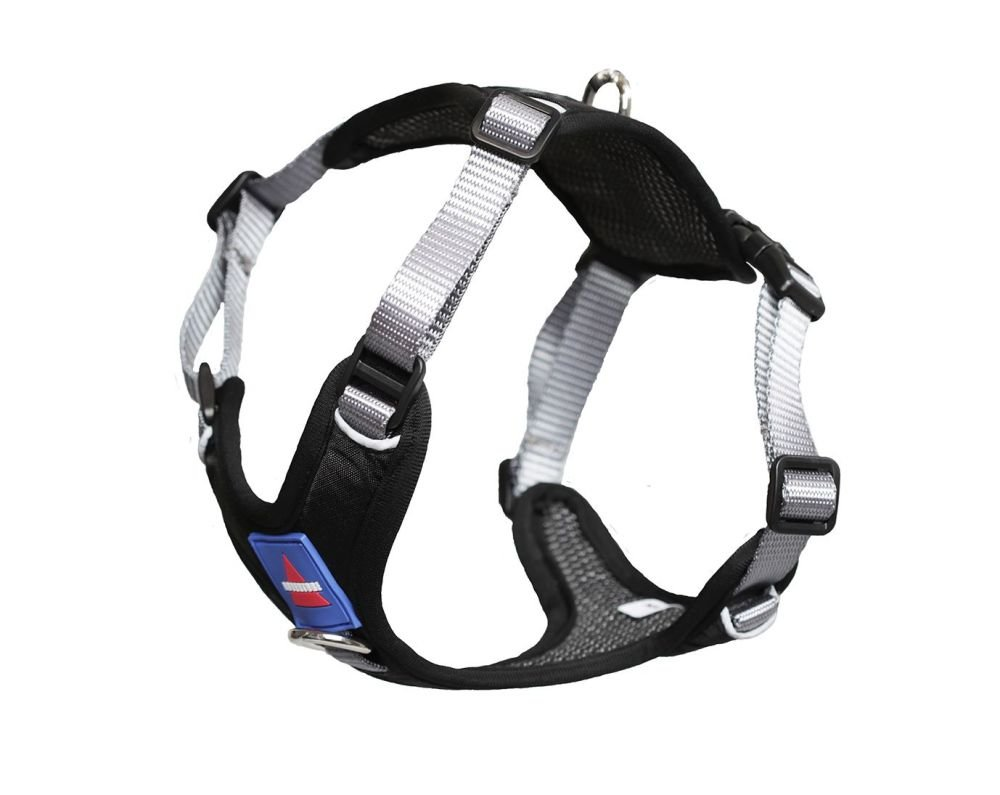 Go Out Harness Black