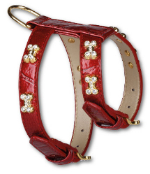 Red Blinking Bones Dod Harness