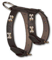 Black Blinking Bones Dog Harness
