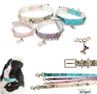 Purple Collar & Lead set