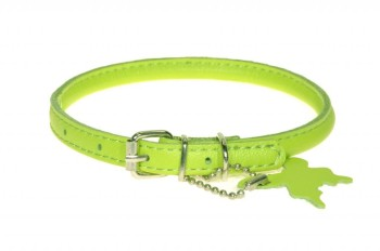 Rolled leather collar Lime