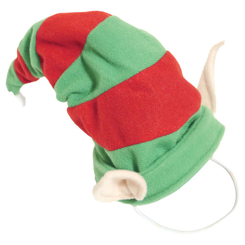 Dog Pixie Hat