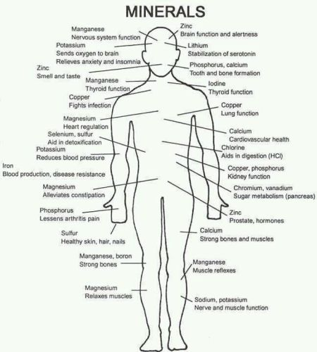mineral diagram on the body. (1)
