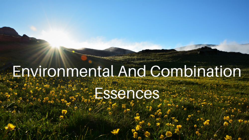 Environmental and Combination Essences