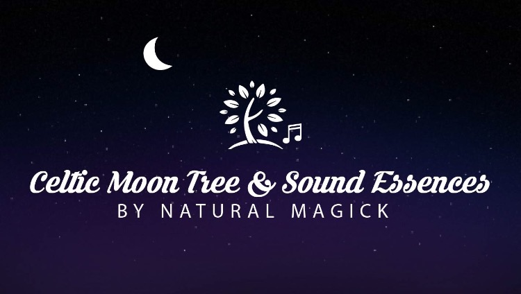 Celtic Moon Tree and Sound Essences