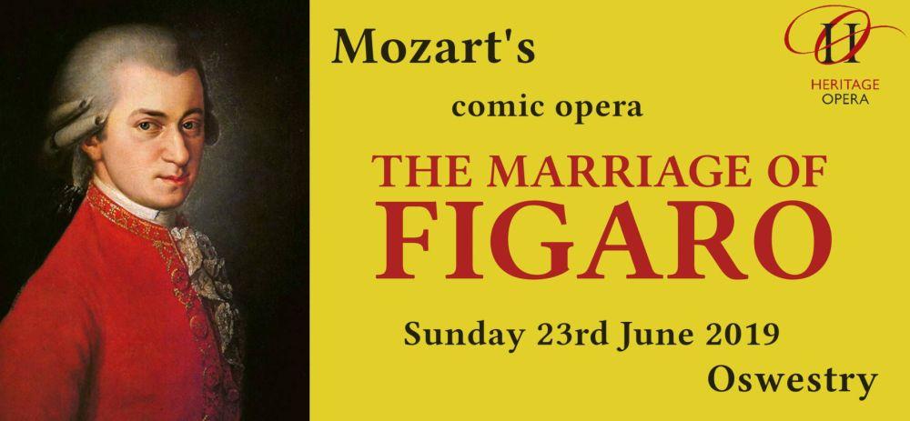 Figaro banner 1 r
