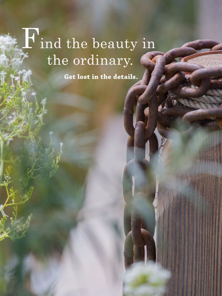Find the beauty in the ordinary print