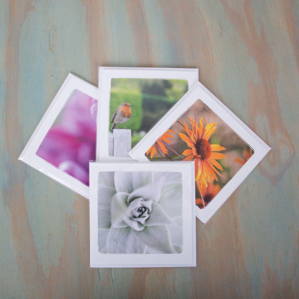 4 greetings cards
