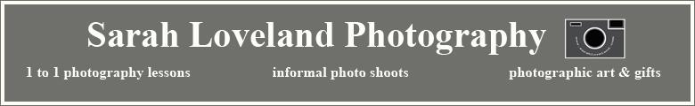 Sarah Loveland, site logo.