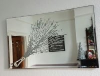 Champagne Explosion in Silver on a Silver Bevelled Mirror 4 sizes