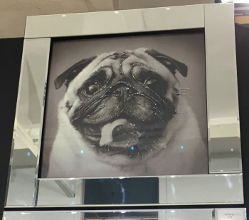 "Mirror framed art print ""Pug"""