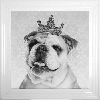 """Mirror framed Sparkle Glitter Art """"Bull Dog"""""""