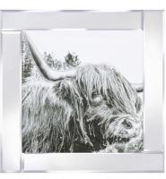 Mirror framed art print Highland Cow