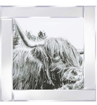 Mirror framed art print Highland Cow
