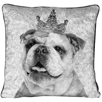 Luxury Feather Filled Cushion Bull Dog King