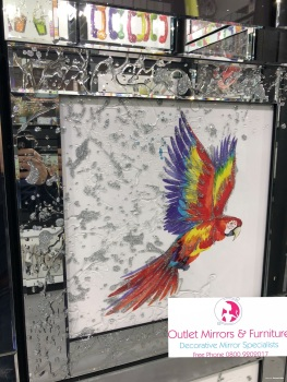Mirror framed Liquid art Colourful Parrot 60cm x 60cm