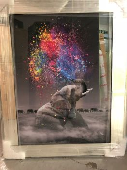 "Mirror framed ""colourful Elephant"" Wall Art"
