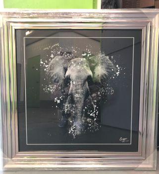 "framed art print ""Elephant"" in a silver Chrome stepped frame 75cm x 75cm"