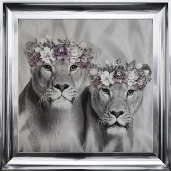# Lion Queens in a Choice of Frame colours & 4 size options