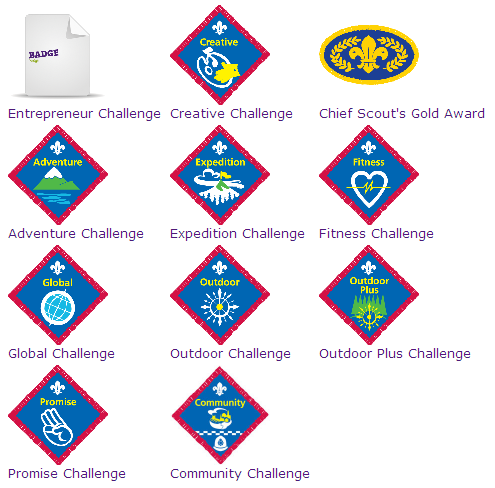 Scouts Challenge
