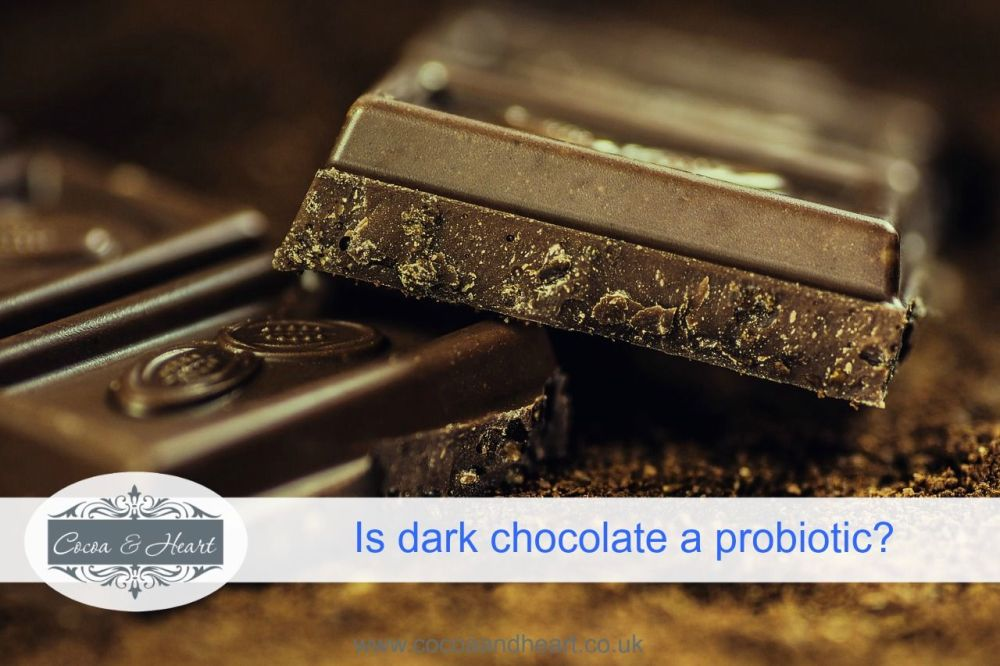 Is dark chocolate a probiotic
